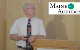 Maine Audubon - Doug Tallamy Talk